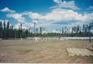 Cricket field of the Bushman's dreams in the Land of the Black Bear: Tomato growing houses in the background