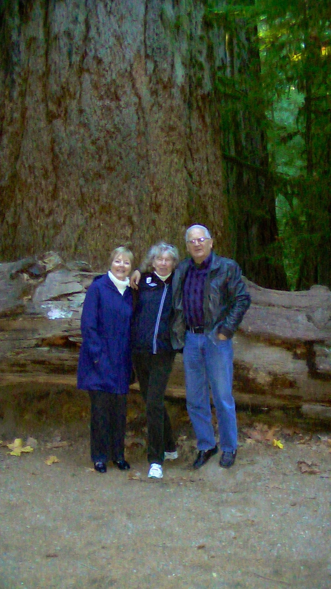Nov, 12, 2014 at Cathedral Grove, Vancouver Island