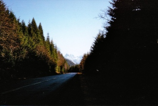 South of Port Hardy, On Trans Canada Hwy.